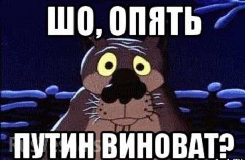 Россия виновата во всём: укр…