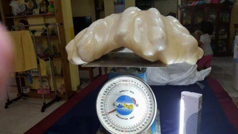 Рыбак нашел 34-килограммовую…