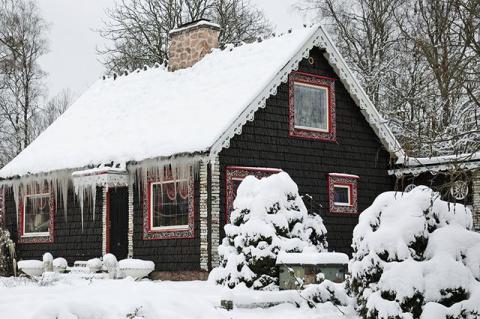 Зимовье для неженок. Как укрывать растения