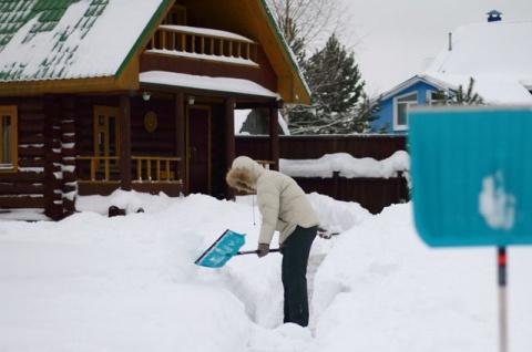 Набрасать побольше снега: почему не работает снежное одеяло для растений