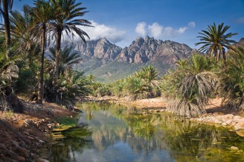Остров Сокотра - затеряный рай на Земле