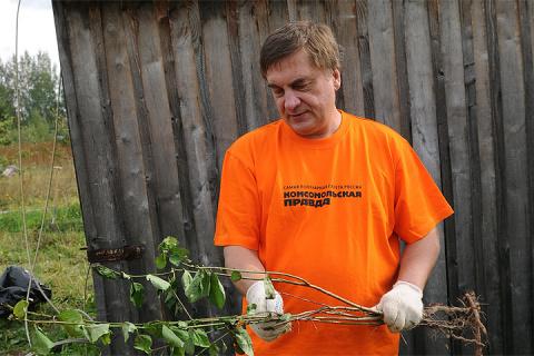 Улучшаем почву: готовь плодородие по осени