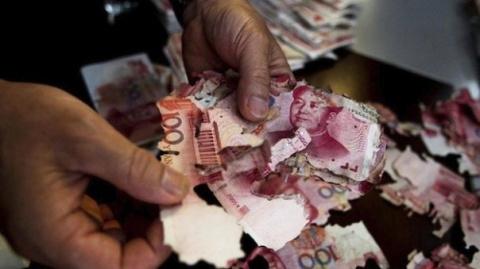 Термиты съели 65 тысяч долларов сбережений китаянки
