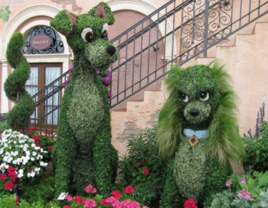 Зеленые собачки