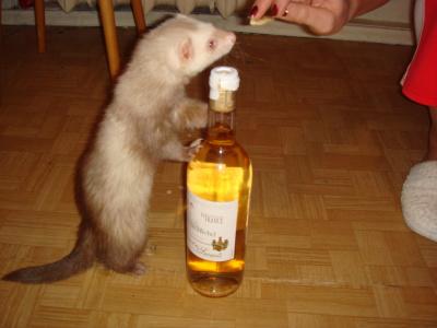 Маленькая Шери хочет пить.