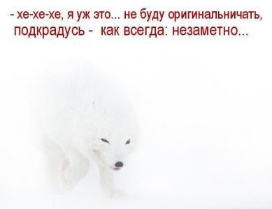 В мире животных-6