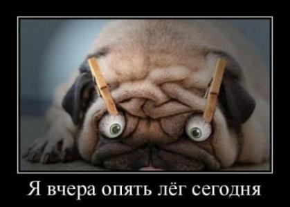 Интернет, собака такой)))