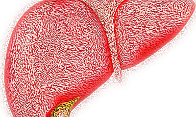 Possible signal pathway in the fight against obesity-related fatty liver disease identified