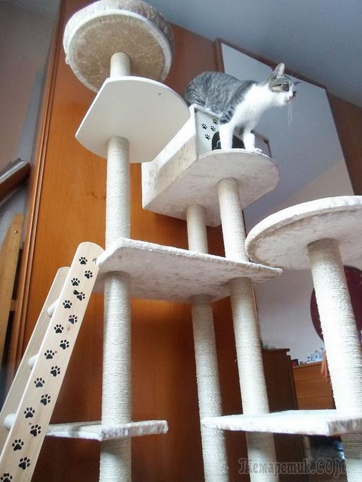 подставка для кошек своими руками