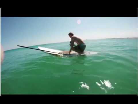 Гигантский кальмар обхватил …