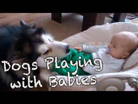 Это видео докажет вам: дети …