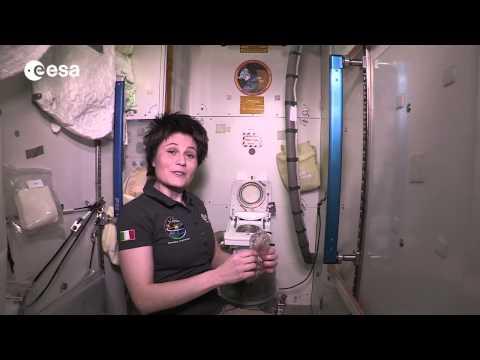 Пикантная жизнь космонавтов:…