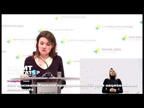 ООН: Новый украинский закон «Об образовании» нарушает права нацменьшинств