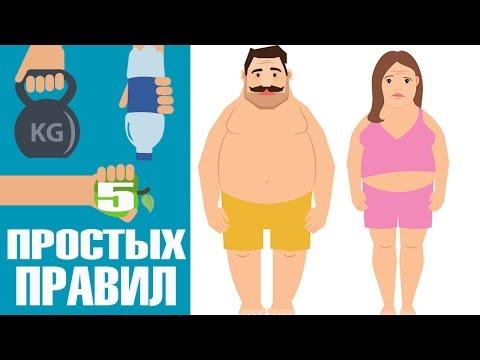 5 простых правил помогут похудеть