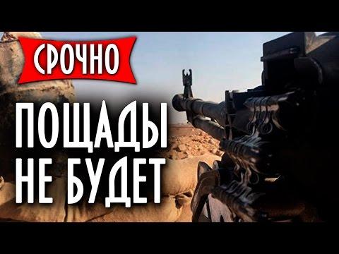 Россия гарантирует: Госдеп вывезет только груз 200 с Алеnnо и Пальмиры