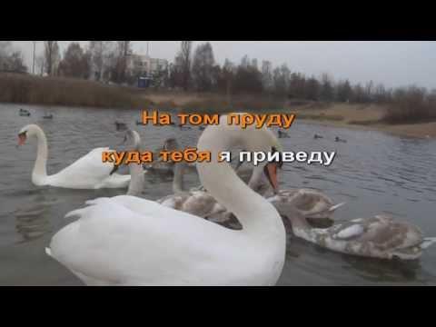 Лесоповал в гостях у Михалыча! - Белый лебедь +караоке!