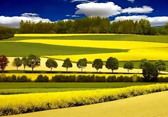 Наша природа ( Германия )