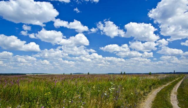 Дорога в поле 2