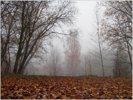 Пал туман...