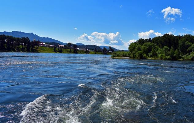 Река Бия (Алтай)
