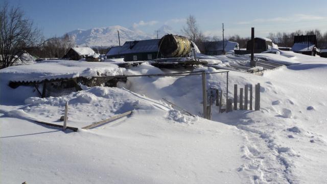 Зимний огород.