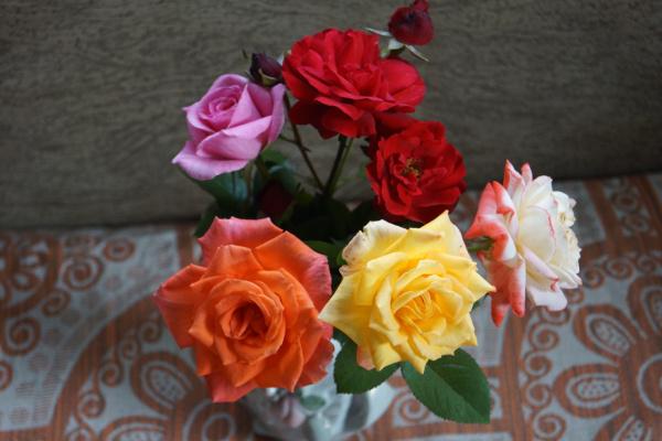 Букет роз .