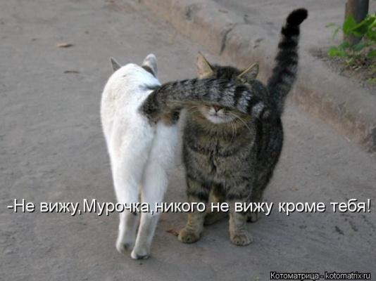 Кроме тебя никого не вижу)))