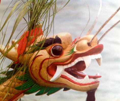 Китайский дракоша