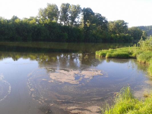 Речка Томь