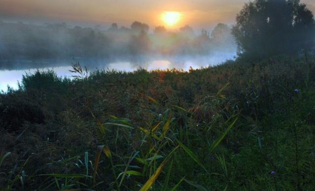 Утро на речке 2