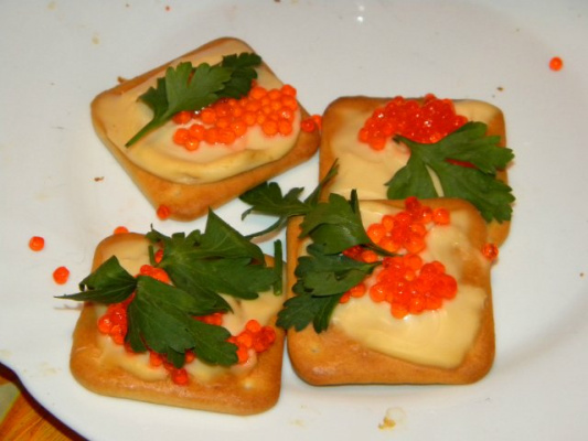 закуска на сырных крекерах