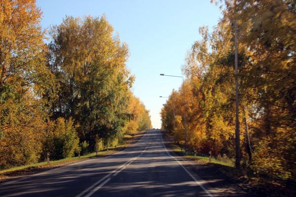 По дороге с осенью