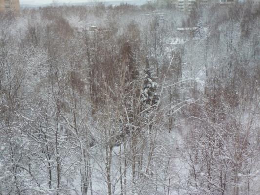 Из окна  - уже зима)))