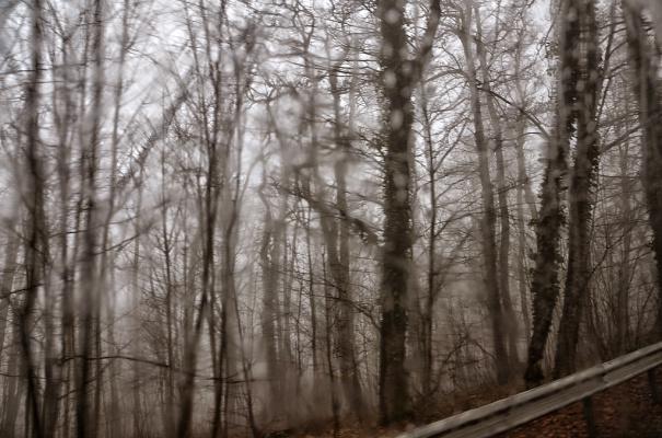 Дождливый день в Сочи.