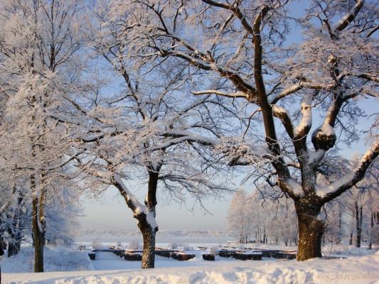 Еще зима