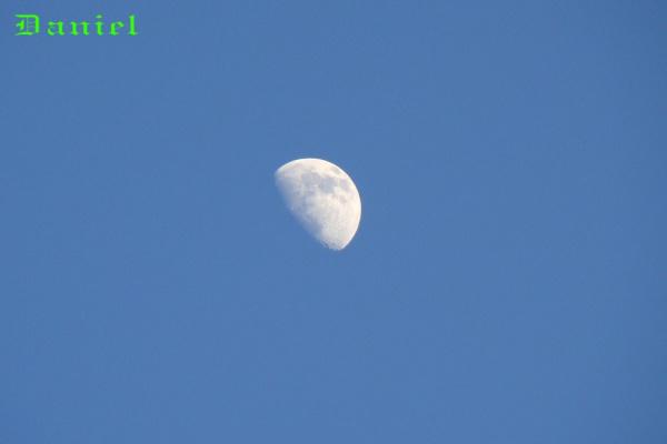 Луна в зимнем небе