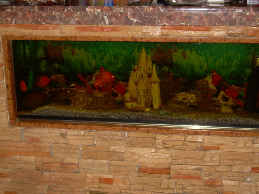 Аквариум в гостиннице под Казельском.