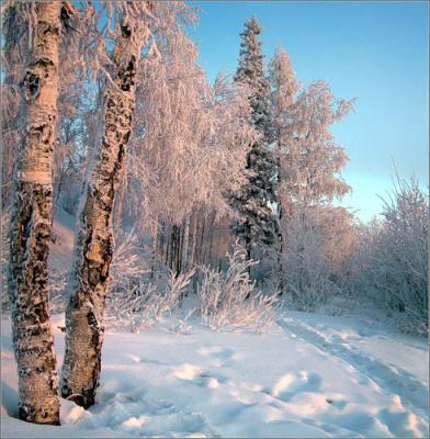 Русская зима...