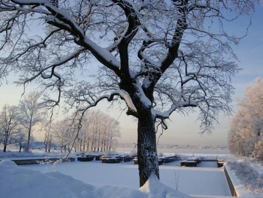 Зима пришла!!!!!!!!!