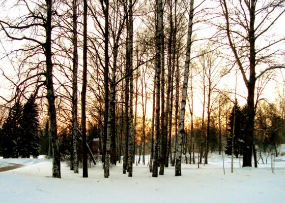 Закат солнышка зимой.