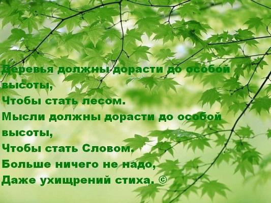 Мысли должны дорасти...