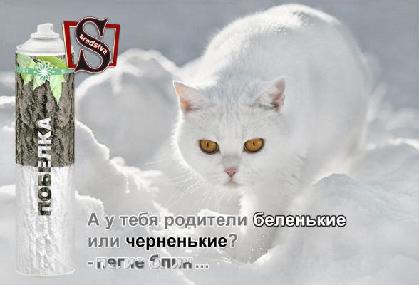 Покрась кота ))