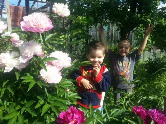 Внуки в саду.