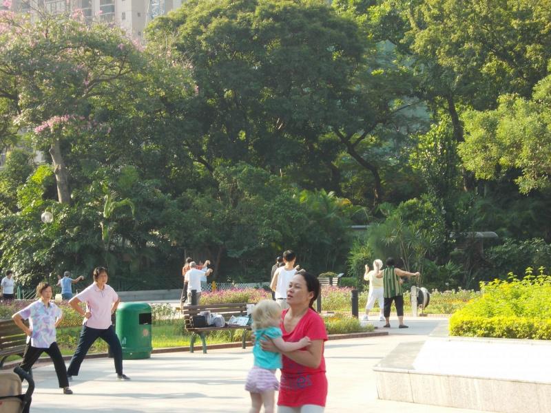 Обычное утро в парке