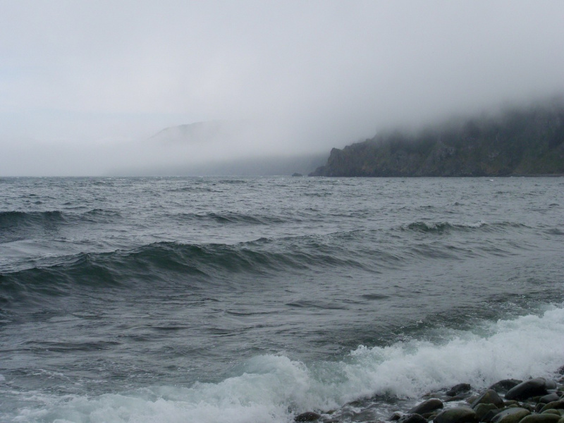 Волны и туман