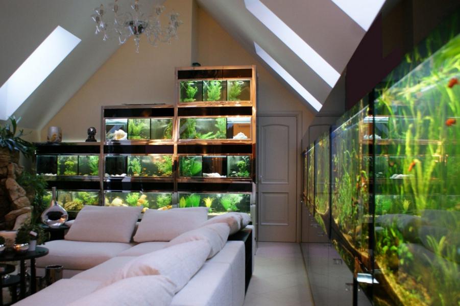 бассейн-2й этаж с аквариумами