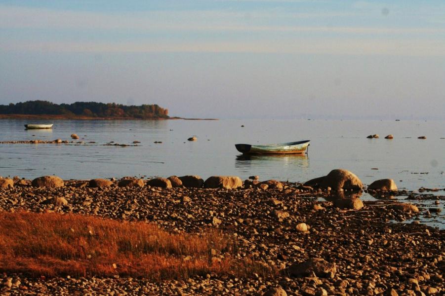 На берегу залива ...