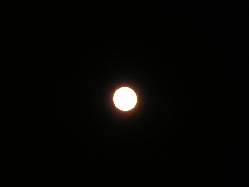Ночь, тишина, задумчивость...