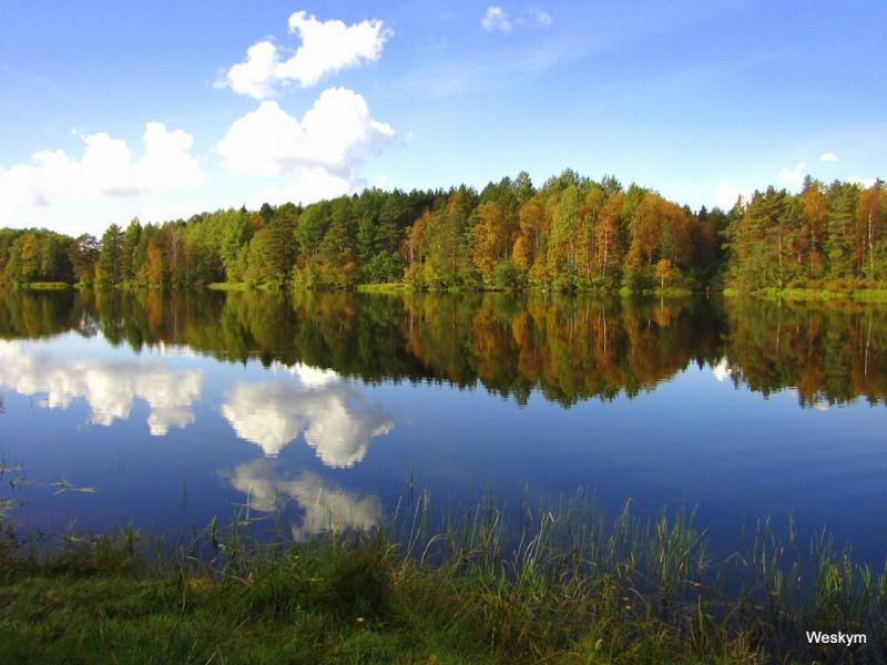 Река Шуя. Карелия