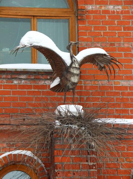 неперелётная птица